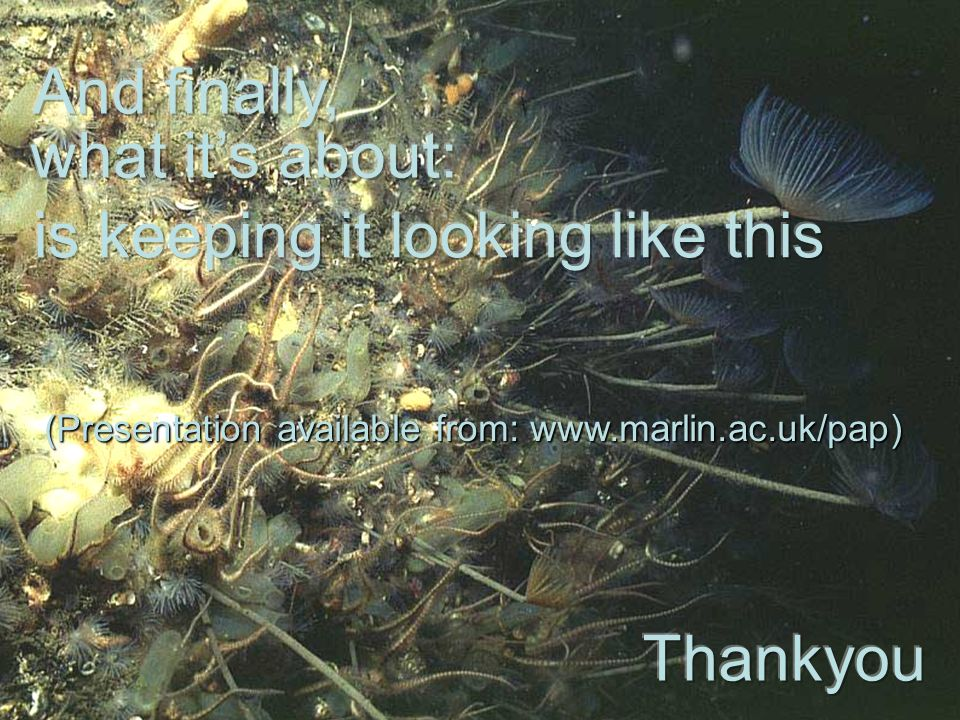 (Presentation available from: www.marlin.ac.uk/pap)
