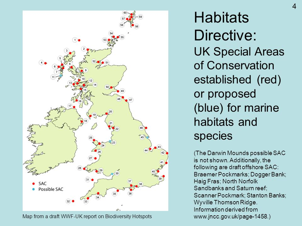 4 Habitats Directive: UK Special Areas of Conservation established (red) or proposed (blue) for marine habitats and species (The Darwin Mounds possible SAC is not shown.