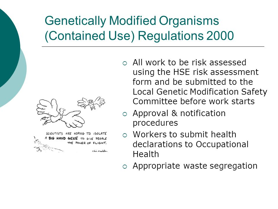 Genetically Modified Organisms (Contained Use) Regulations 2000 All work to be risk assessed using the HSE risk assessment form and be submitted to the Local Genetic Modification Safety Committee before work starts Approval & notification procedures Workers to submit health declarations to Occupational Health Appropriate waste segregation