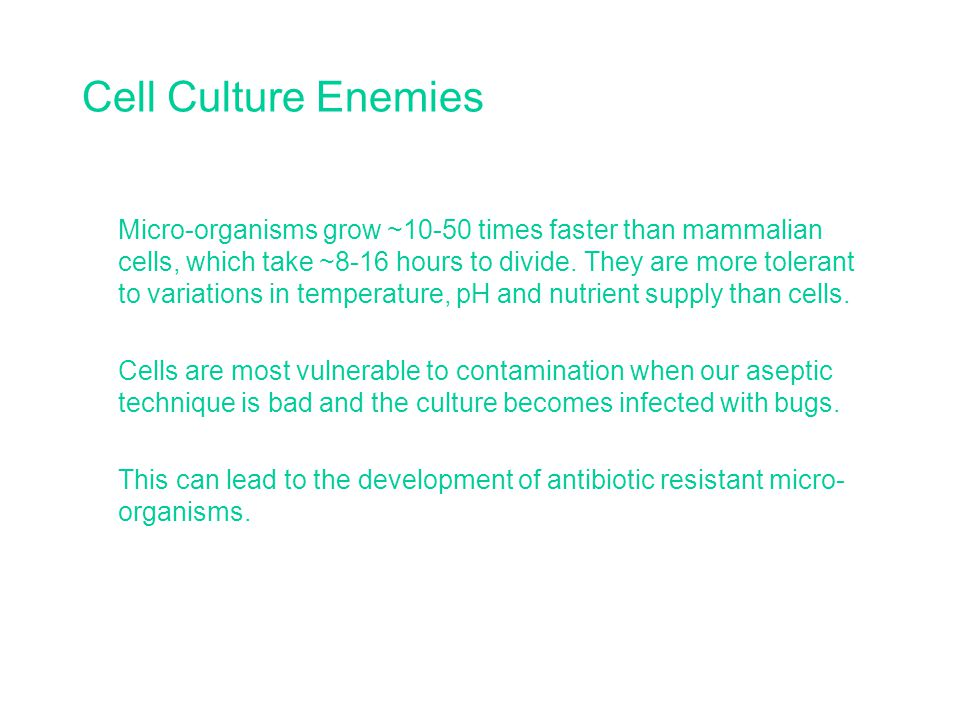 Cell Culture Enemies Micro-organisms grow ~10-50 times faster than mammalian cells, which take ~8-16 hours to divide.