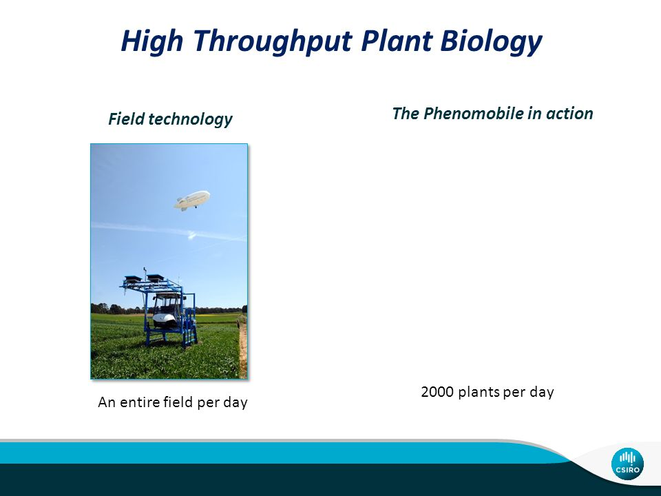 Field technology The Phenomobile in action 2000 plants per day High Throughput Plant Biology An entire field per day