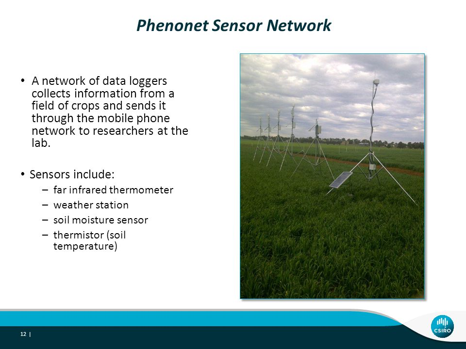 Phenonet Sensor Network A network of data loggers collects information from a field of crops and sends it through the mobile phone network to researchers at the lab.