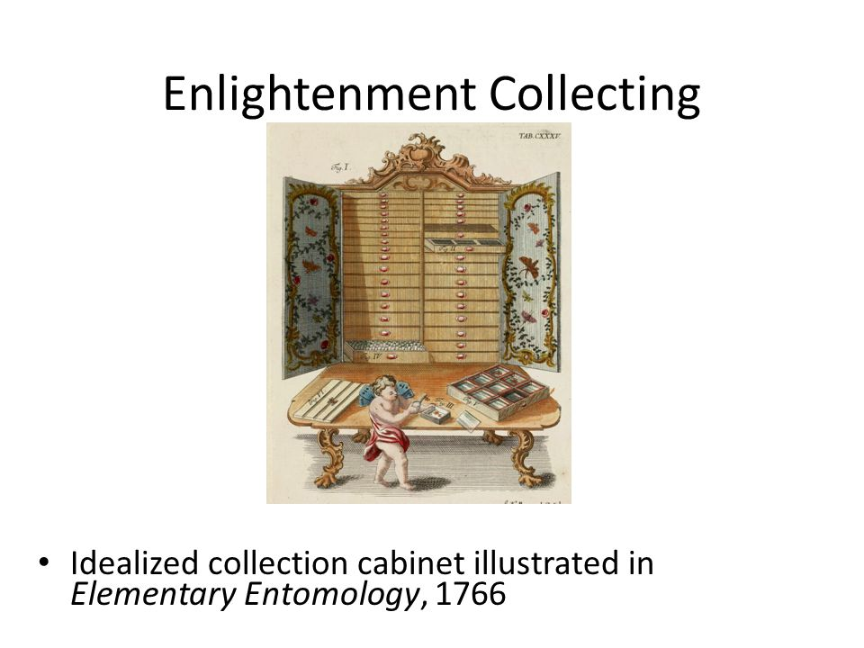 Enlightenment Collecting Idealized collection cabinet illustrated in Elementary Entomology, 1766