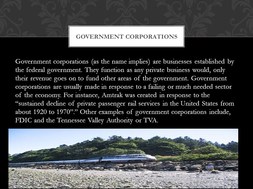Government corporations (as the name implies) are businesses established by the federal government.