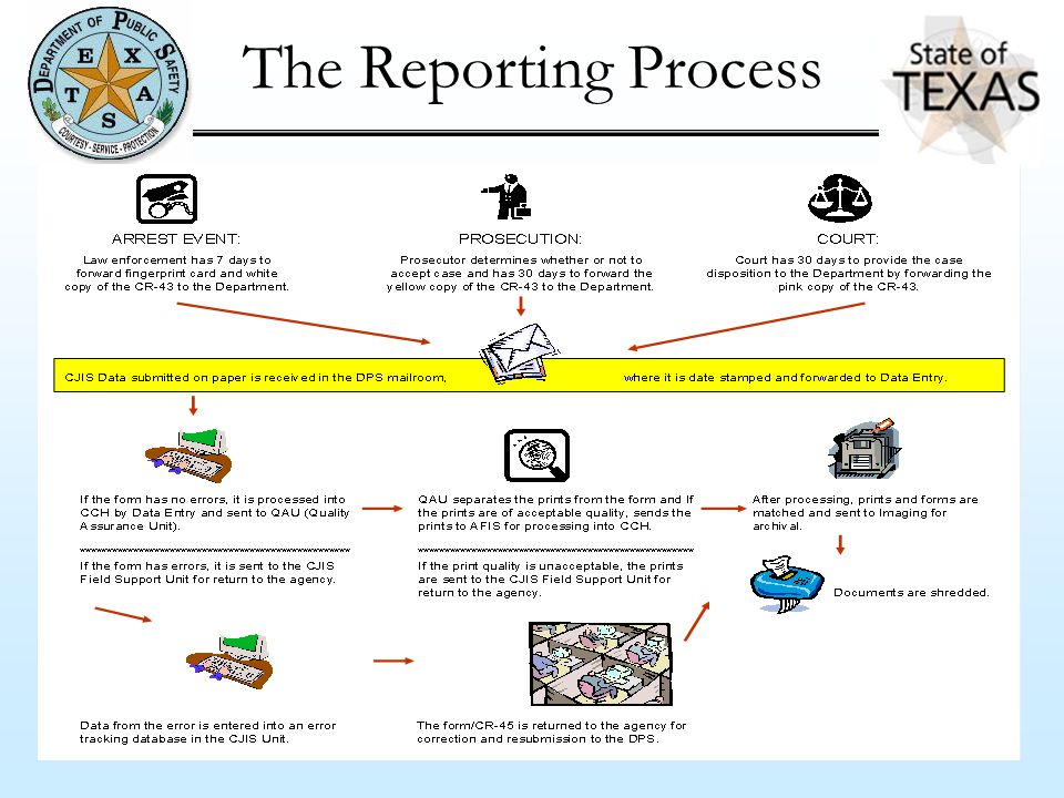 The Reporting Process