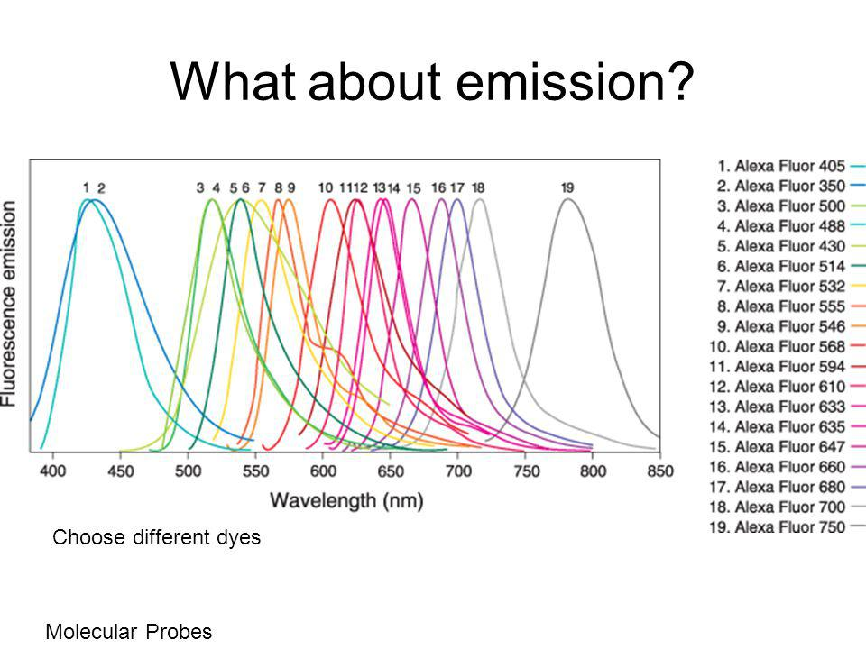 What about emission Molecular Probes Choose different dyes