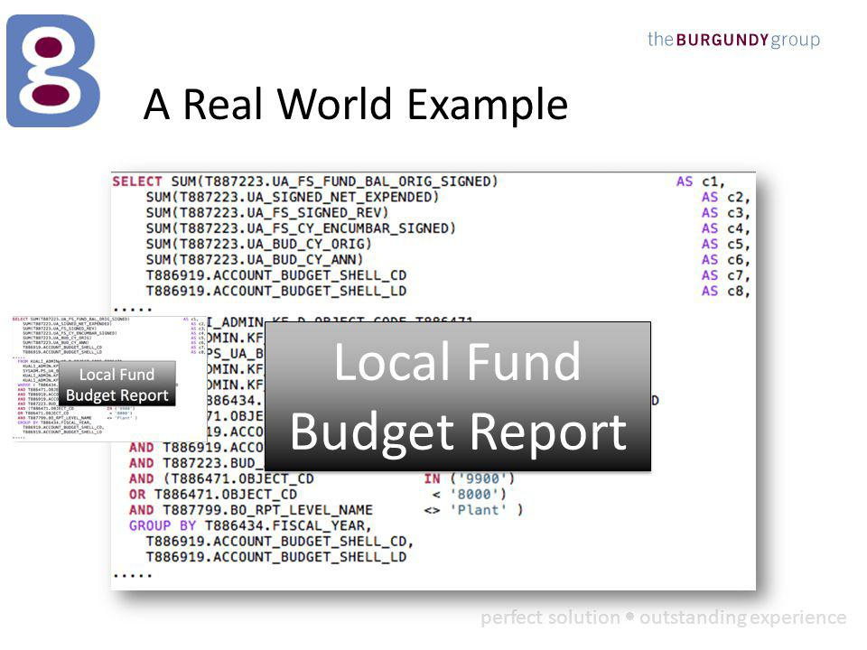 perfect solution outstanding experience A Real World Example Local Fund Budget Report Local Fund Budget Report