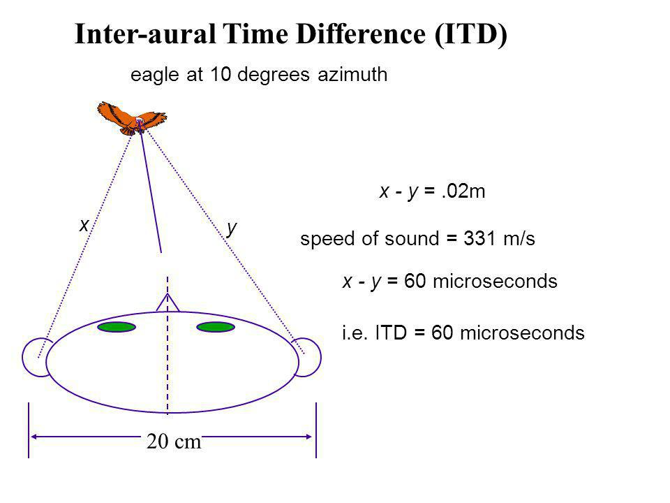eagle at 10 degrees azimuth x - y =.02m speed of sound = 331 m/s x - y = 60 microseconds i.e.