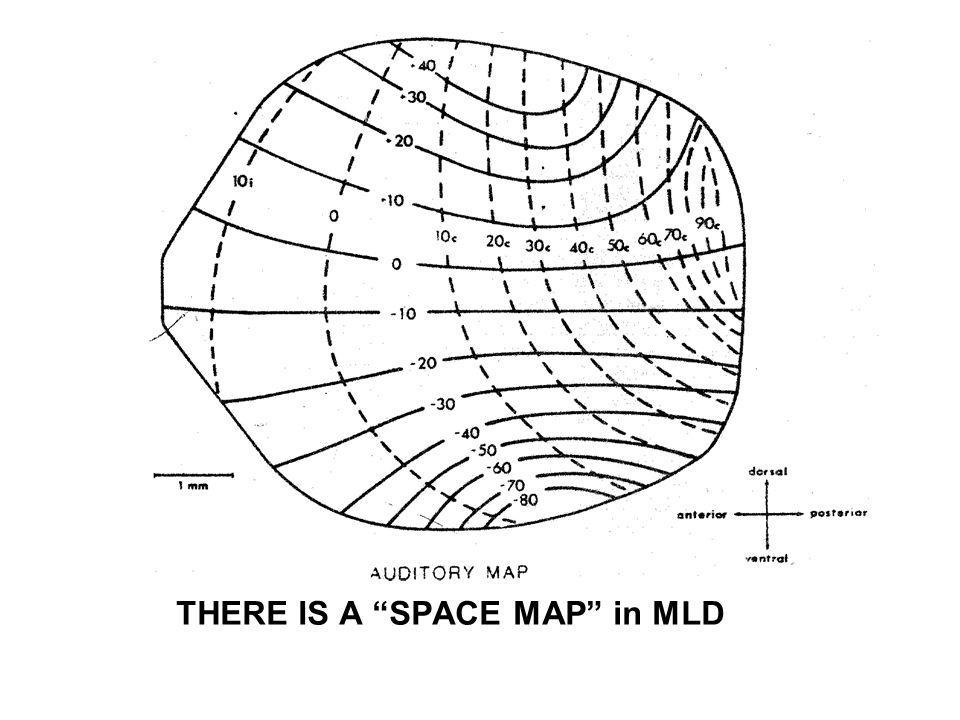 THERE IS A SPACE MAP in MLD
