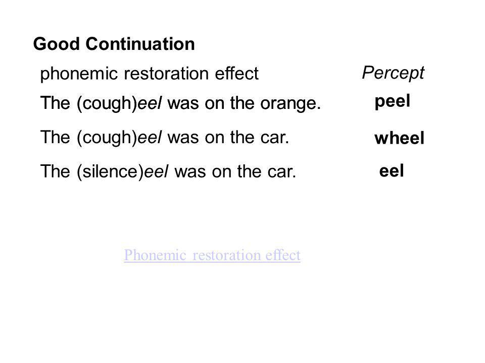 Good Continuation phonemic restoration effect The (cough)eel was on the orange.