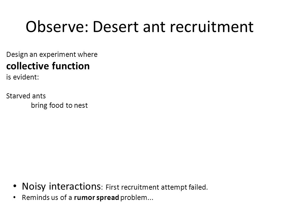 Observe: Desert ant recruitment Noisy interactions : First recruitment attempt failed.