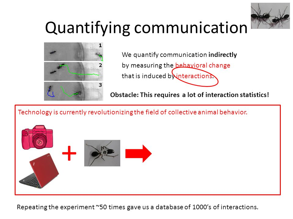 Quantifying communication We quantify communication indirectly by measuring the behavioral change that is induced by interactions.