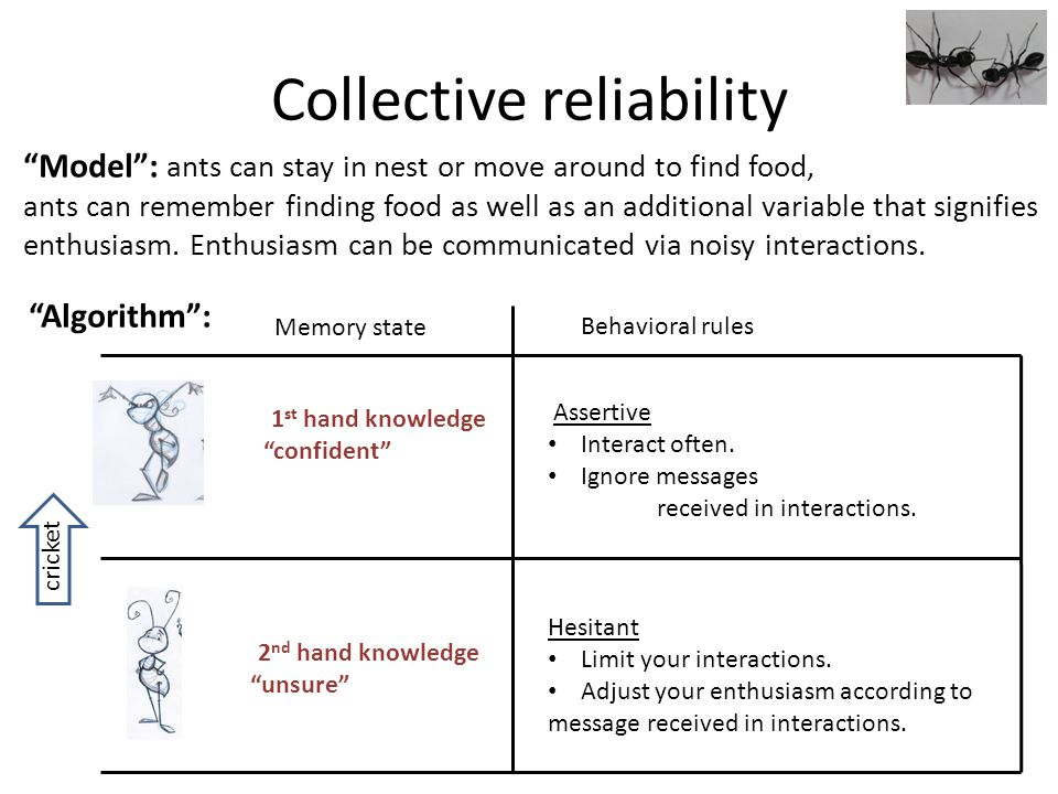 Collective reliability Model: ants can stay in nest or move around to find food, ants can remember finding food as well as an additional variable that signifies enthusiasm.