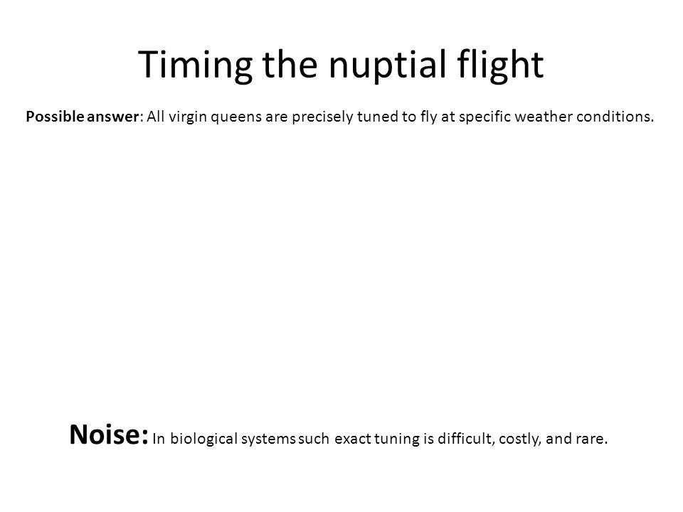 Timing the nuptial flight Noise: In biological systems such exact tuning is difficult, costly, and rare.