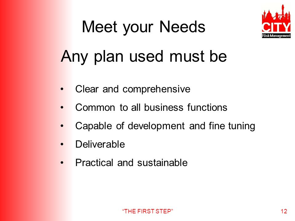 THE FIRST STEP12 Meet your Needs Any plan used must be Clear and comprehensive Common to all business functions Capable of development and fine tuning Deliverable Practical and sustainable
