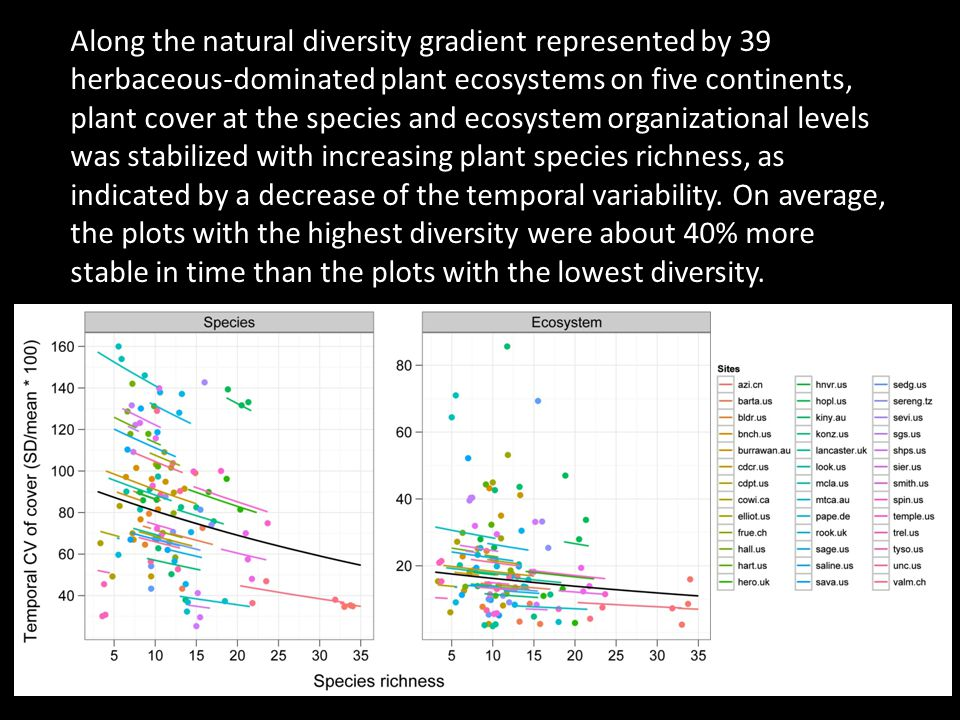 Along the natural diversity gradient represented by 39 herbaceous-dominated plant ecosystems on five continents, plant cover at the species and ecosystem organizational levels was stabilized with increasing plant species richness, as indicated by a decrease of the temporal variability.