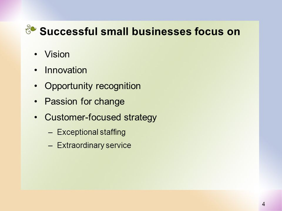 4 Successful small businesses focus on Vision Innovation Opportunity recognition Passion for change Customer-focused strategy –Exceptional staffing –Extraordinary service