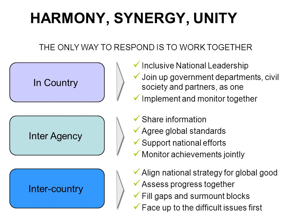 HARMONY, SYNERGY, UNITY THE ONLY WAY TO RESPOND IS TO WORK TOGETHER In Country Inter Agency Inter-country Inclusive National Leadership Join up government departments, civil society and partners, as one Implement and monitor together Share information Agree global standards Support national efforts Monitor achievements jointly Align national strategy for global good Assess progress together Fill gaps and surmount blocks Face up to the difficult issues first