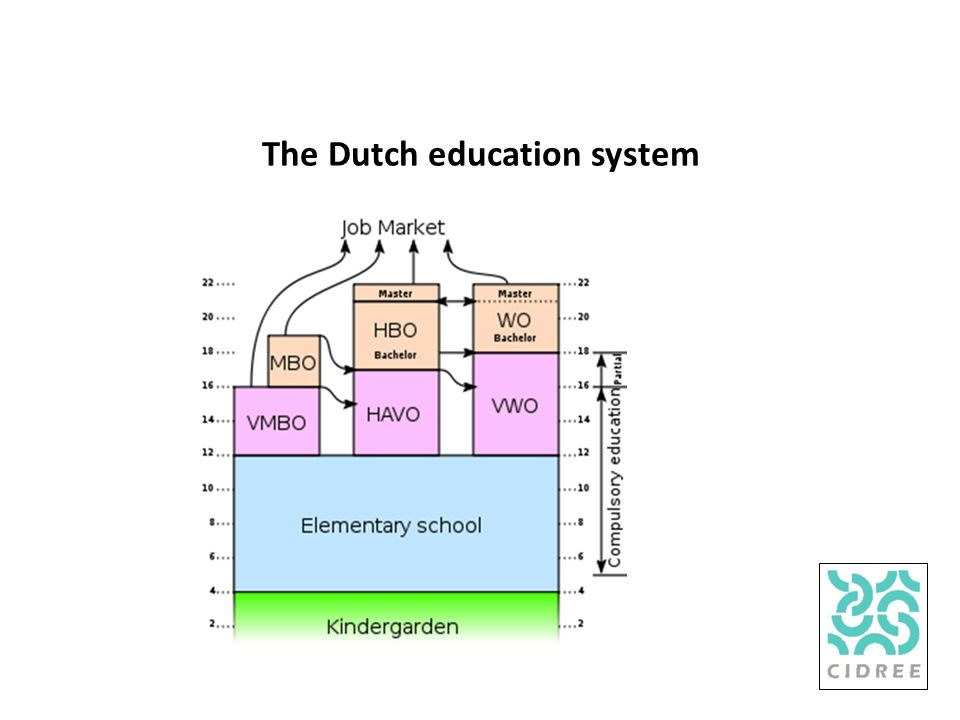 The Dutch education system