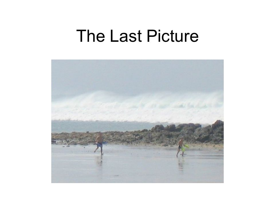 The Last Picture