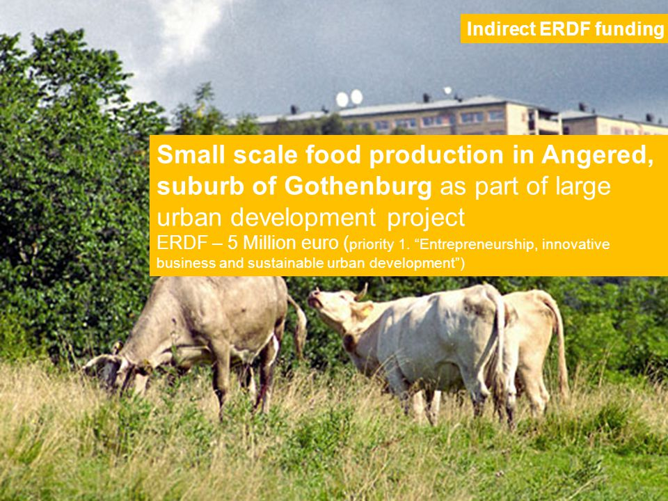 Small scale food production in Angered, suburb of Gothenburg as part of large urban development project ERDF – 5 Million euro ( priority 1.