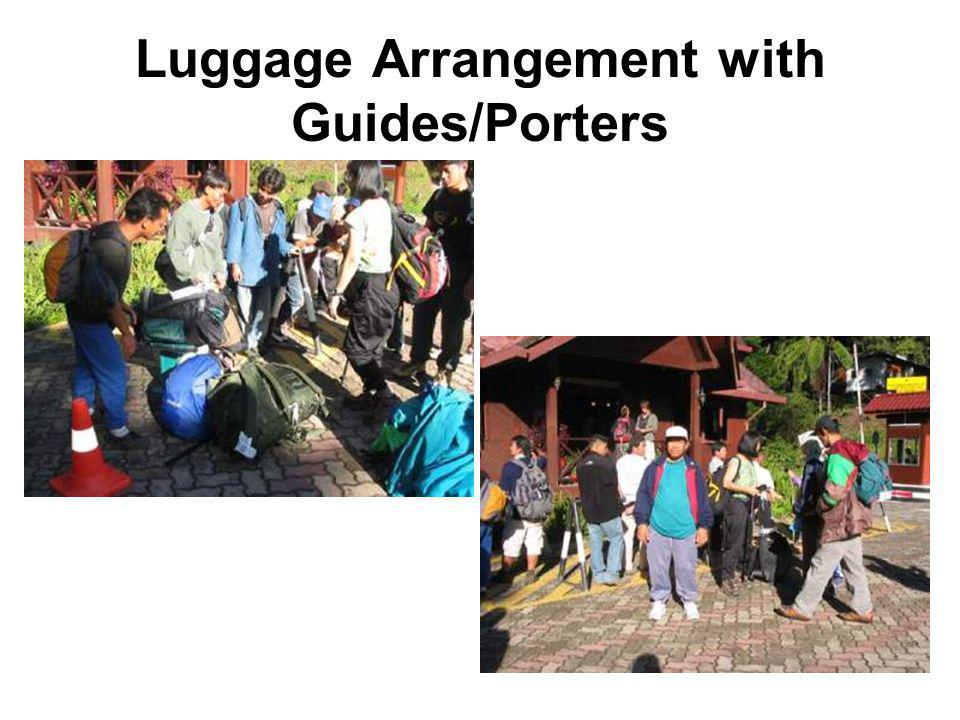 Luggage Arrangement with Guides/Porters
