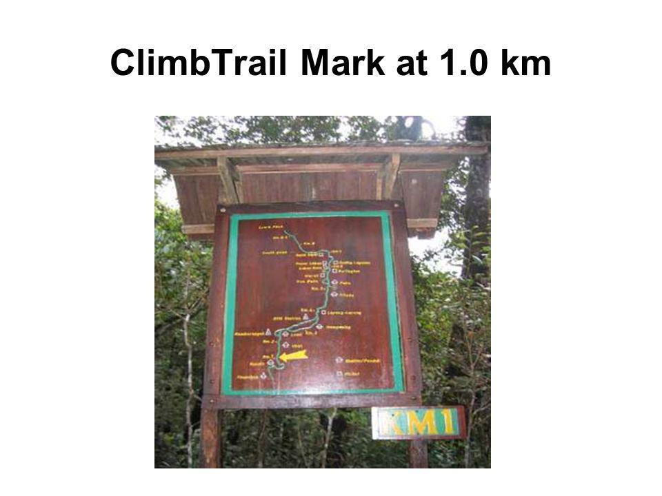 ClimbTrail Mark at 1.0 km