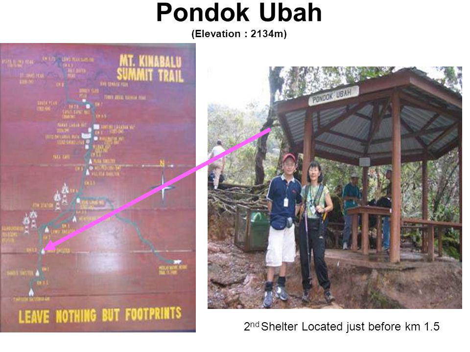 Pondok Ubah (Elevation : 2134m) 2 nd Shelter Located just before km 1.5