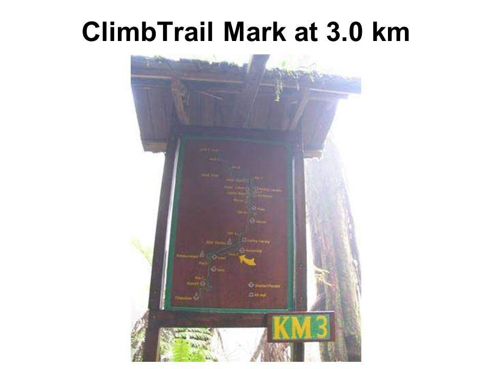 ClimbTrail Mark at 3.0 km