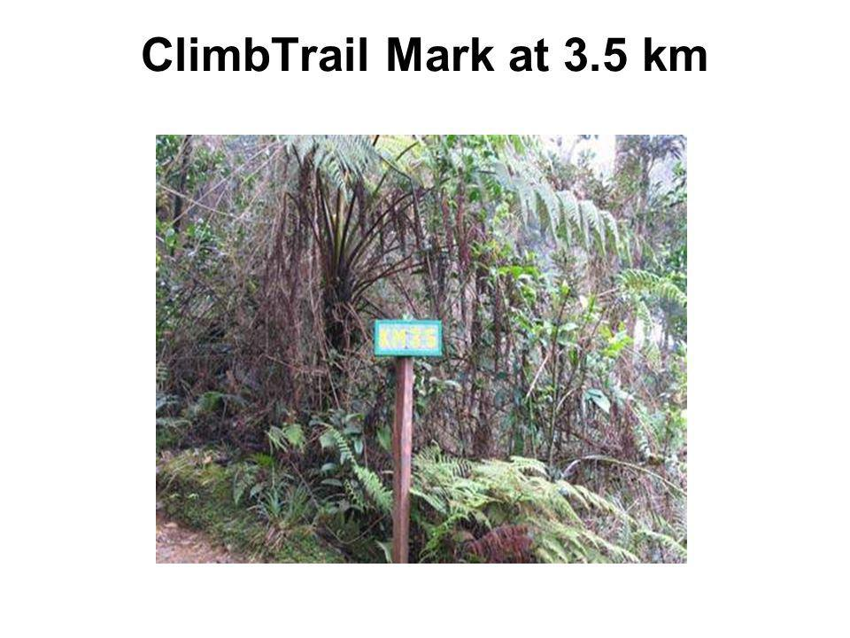 ClimbTrail Mark at 3.5 km