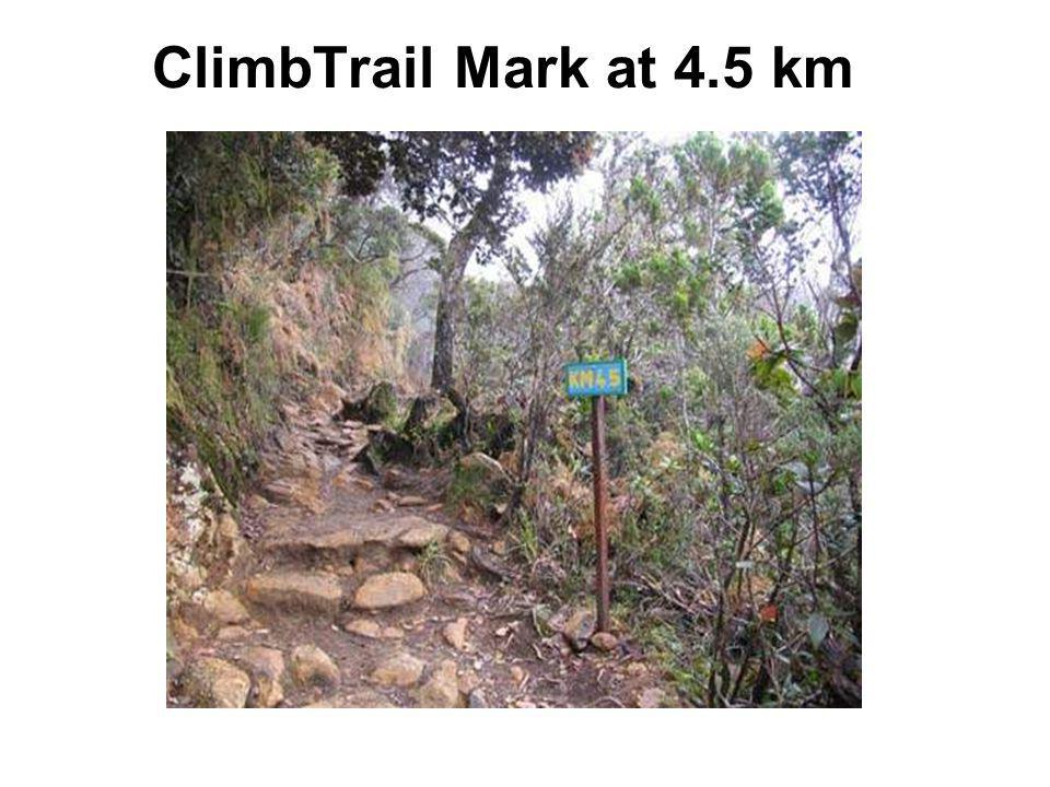 ClimbTrail Mark at 4.5 km