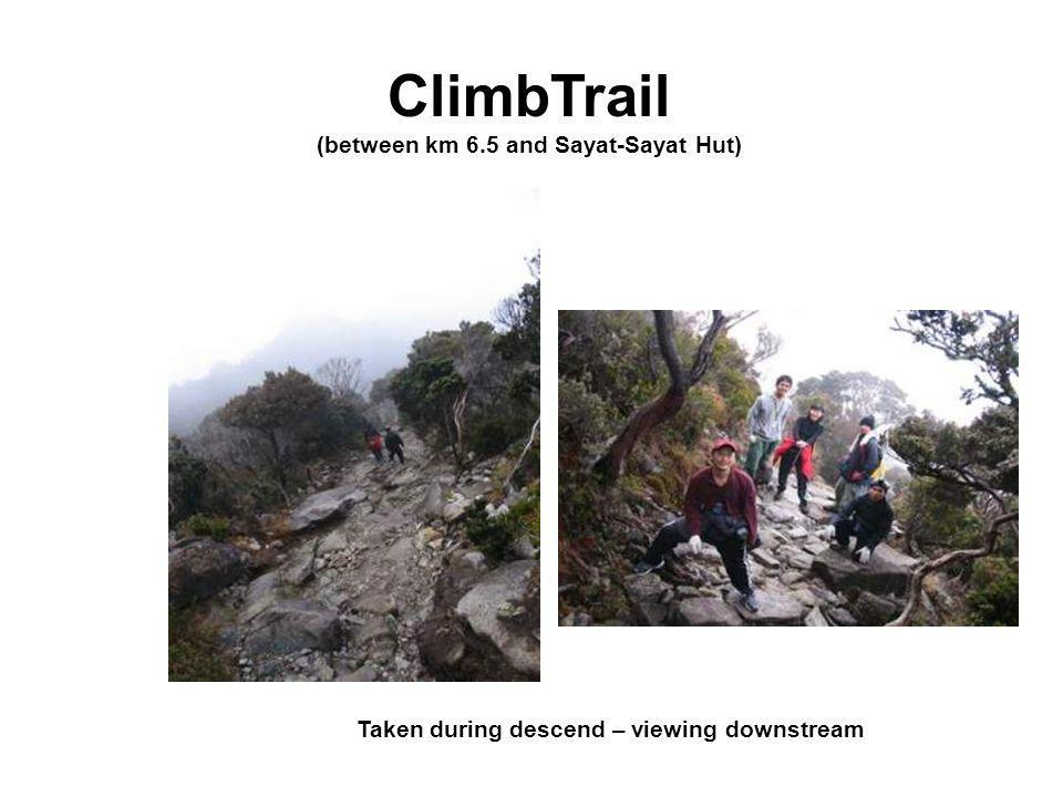 ClimbTrail (between km 6.5 and Sayat-Sayat Hut) Taken during descend – viewing downstream