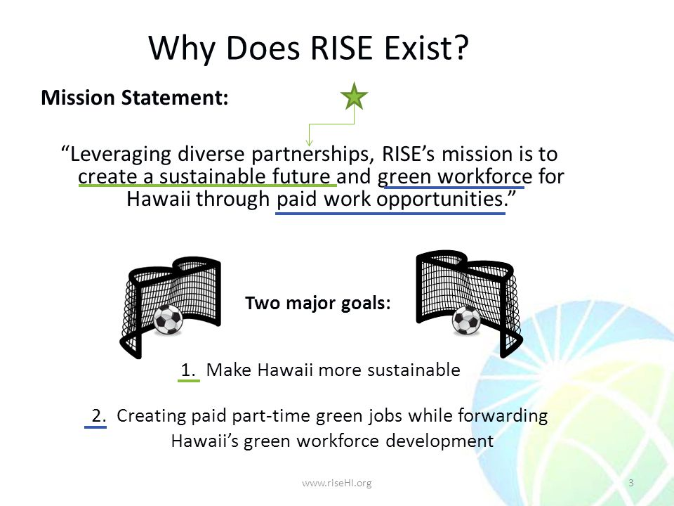 Why Does RISE Exist.