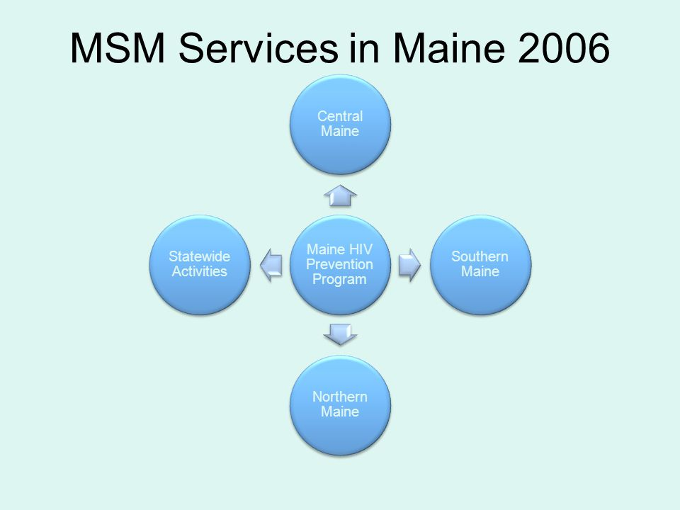 MSM Services in Maine 2006 Maine HIV Prevention Program Central Maine Southern Maine Northern Maine Statewide Activities