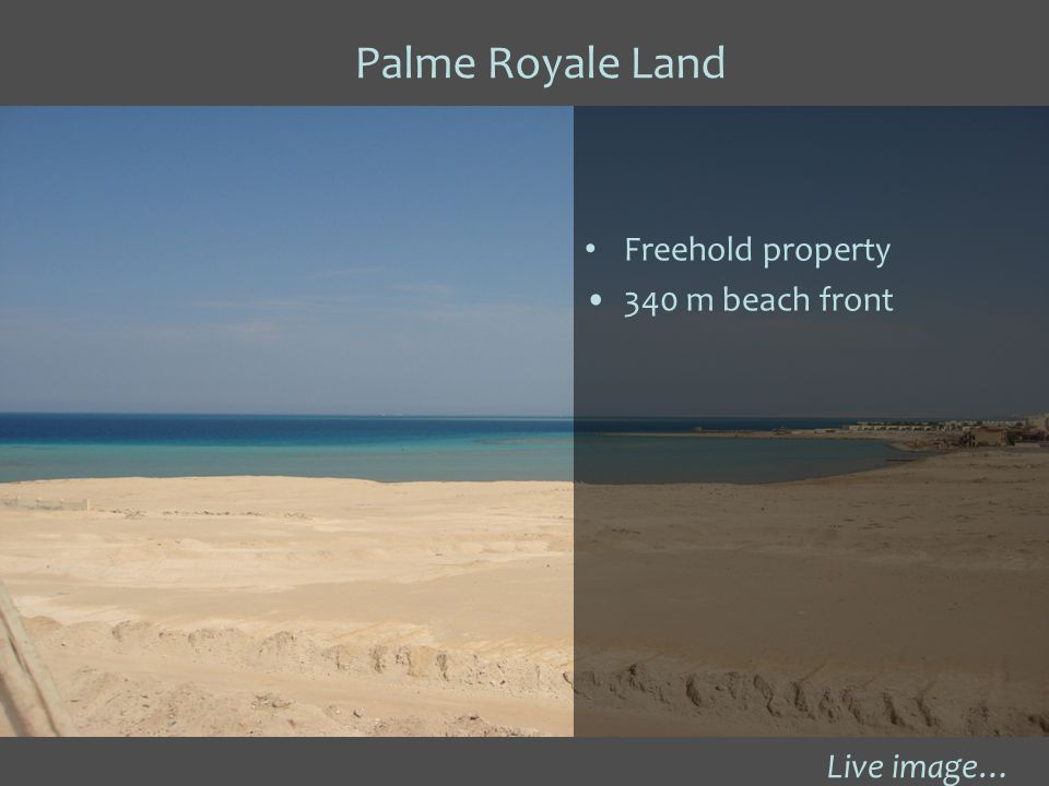 Palme Royale Land Live image… Freehold property 340 m beach front