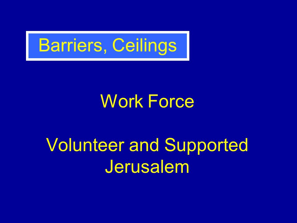 Work Force Volunteer and Supported Jerusalem Barriers, Ceilings