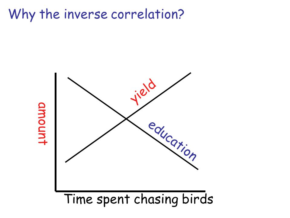 Why the inverse correlation amount yield education Time spent chasing birds