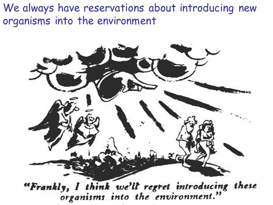 We always have reservations about introducing new organisms into the environment