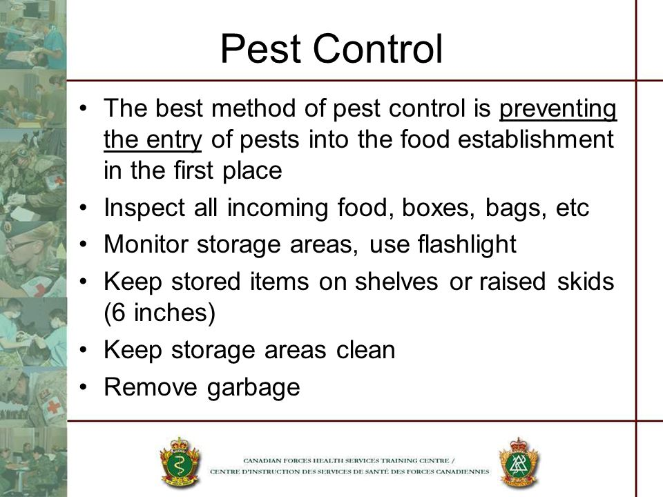 Pest Control The best method of pest control is preventing the entry of pests into the food establishment in the first place Inspect all incoming food, boxes, bags, etc Monitor storage areas, use flashlight Keep stored items on shelves or raised skids (6 inches) Keep storage areas clean Remove garbage