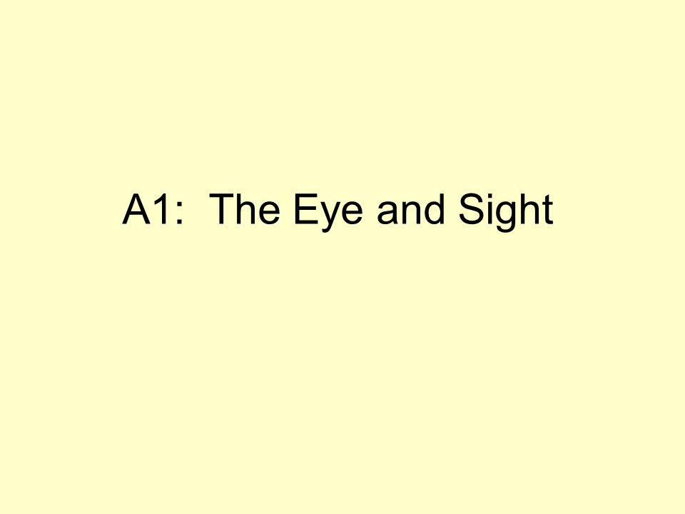 A1: The Eye and Sight
