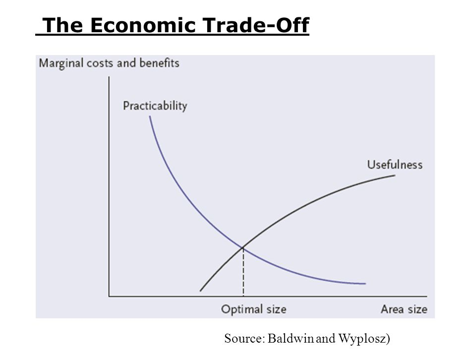The Economic Trade-Off Source: Baldwin and Wyplosz)