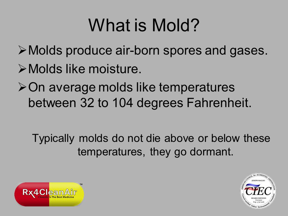 Molds produce air-born spores and gases. Molds like moisture.