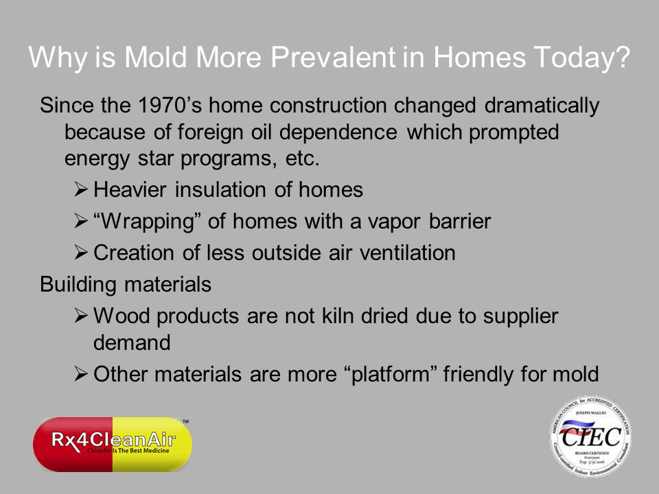 Why is Mold More Prevalent in Homes Today.