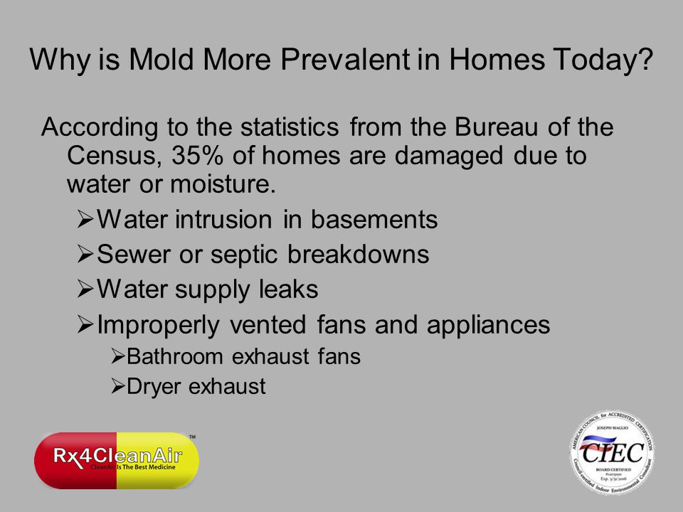 According to the statistics from the Bureau of the Census, 35% of homes are damaged due to water or moisture.