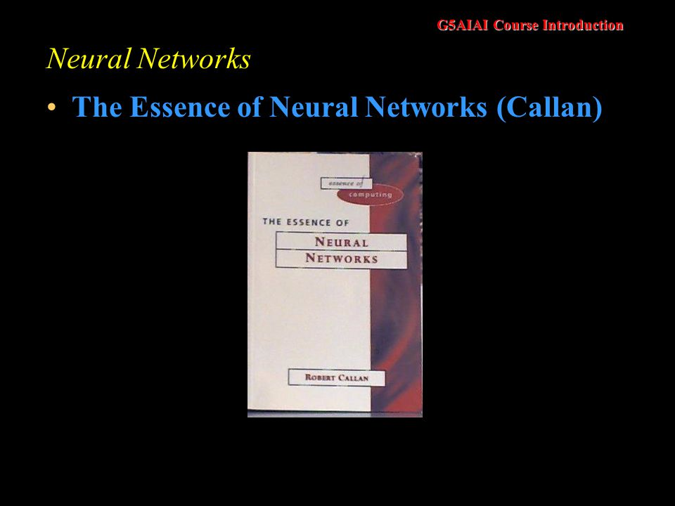 G5AIAI Course Introduction Neural Networks The Essence of Neural Networks (Callan)