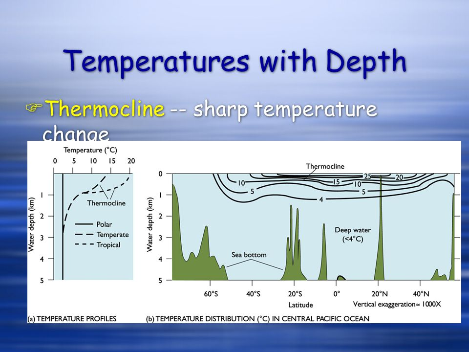 Temperatures with Depth FThermocline -- sharp temperature change