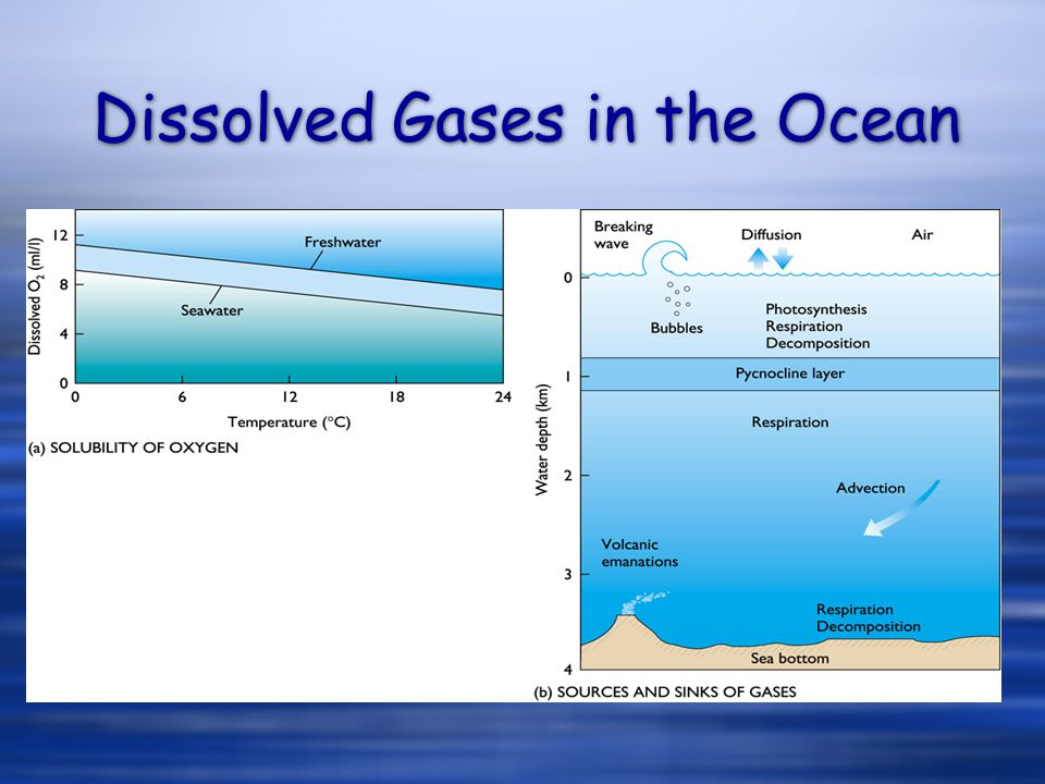 Dissolved Gases in the Ocean