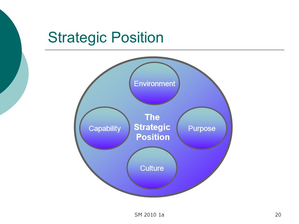 SM 2010 1a20 Strategic Position The Strategic Position Environment Culture PurposeCapability