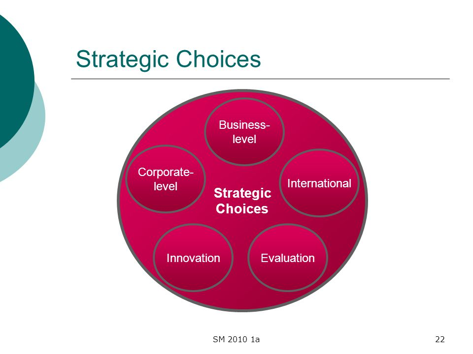 SM 2010 1a22 Strategic Choices Strategic Choices Business- level Innovation International Corporate- level Evaluation