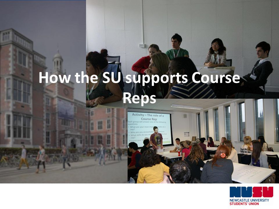 How the SU supports Course Reps